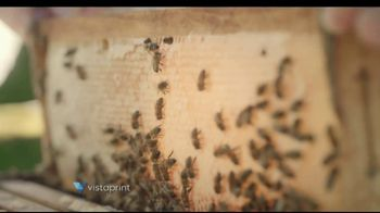 Vistaprint TV Spot, 'What Makes Your Business Great: Honey & Mosaic' - Thumbnail 1