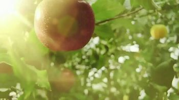 Strongbow Artisanal Blend TV Spot, 'Fresh Remix' Song by Crystal Fighters - Thumbnail 3
