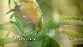 Tío Nacho Mexican Herbs TV Spot, 'Tu cabello se siente vivo' [Spanish] - Thumbnail 4