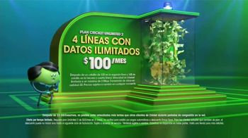 Cricket Wireless Plan Unlimited 2 TV Spot, 'Gana a lo grande' [Spanish] - Thumbnail 4