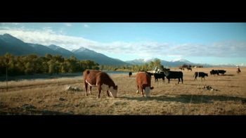 Wells Fargo con Zelle TV Spot, 'Vacas' [Spanish] - Thumbnail 1