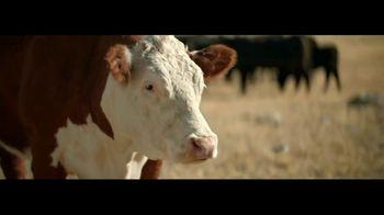 Wells Fargo con Zelle TV Spot, 'Vacas' [Spanish] - Thumbnail 2