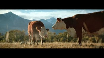 Wells Fargo con Zelle TV Spot, 'Vacas' [Spanish]