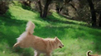 Rachael Ray Nutrish Peak TV Spot, 'The Hunt Is Over'