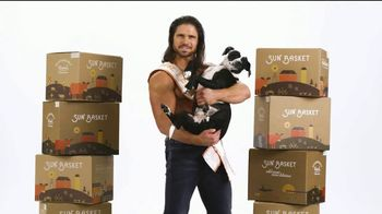 Sun Basket TV Spot, 'Guy Holding a Dog'