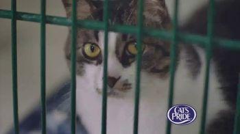 Cat's Pride TV Spot, 'Litter for Good Program' Ft. Katherine Heigl - Thumbnail 2