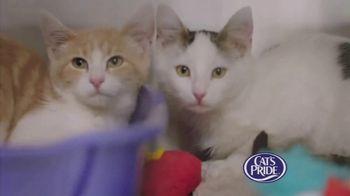 Cat's Pride TV Spot, 'Litter for Good Program' Ft. Katherine Heigl - Thumbnail 8