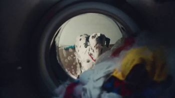 Culligan TV Spot, 'If Dogs Could' - Thumbnail 3