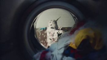 Culligan TV Spot, 'If Dogs Could' - Thumbnail 5