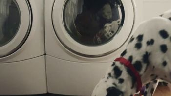 Culligan TV Spot, 'If Dogs Could' - Thumbnail 6