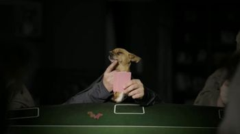 Sit & Go 2.0 TV Spot, 'Gone to the Dogs' - Thumbnail 4