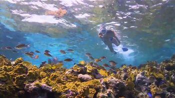 Atlantis TV Spot, 'Coral Reef Conservation' - Thumbnail 1