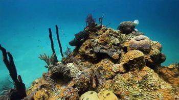 Atlantis TV Spot, 'Coral Reef Conservation' - Thumbnail 2
