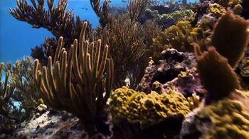 Atlantis TV Spot, 'Coral Reef Conservation' - Thumbnail 3
