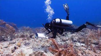 Atlantis TV Spot, 'Coral Reef Conservation' - Thumbnail 4