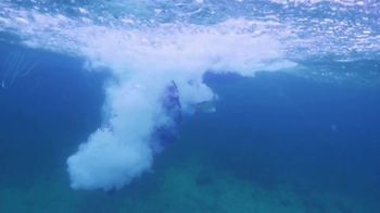 Atlantis TV Spot, 'Coral Reef Conservation' - Thumbnail 6