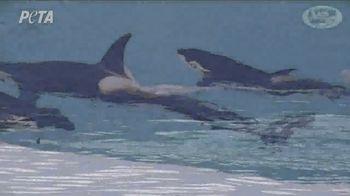 PETA TV Spot, 'SeaWorld' - Thumbnail 4