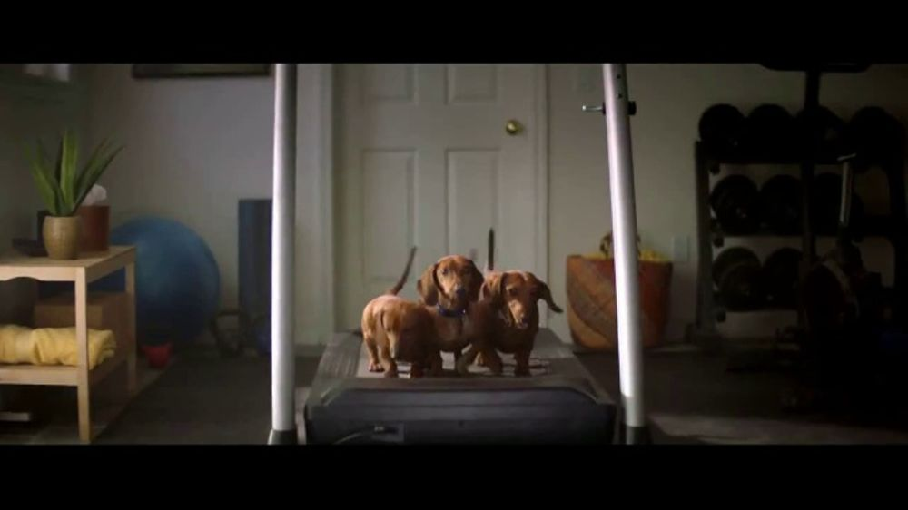 Nature's Recipe TV Commercial, 'Fuel the Wag' - iSpot.tv