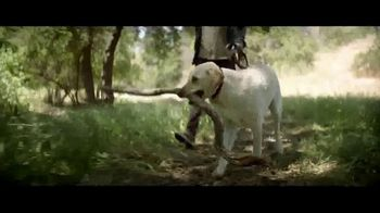 Nature's Recipe TV Spot, 'Fuel the Wag' - Thumbnail 1