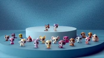 Littlest Pet Shop Pets TV Spot, 'Who Will You Find?' - Thumbnail 8
