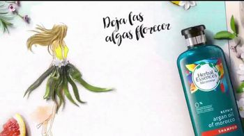Herbal Essences bio:renew TV Spot, 'Mucho gusto, aloe' [Spanish] - Thumbnail 2
