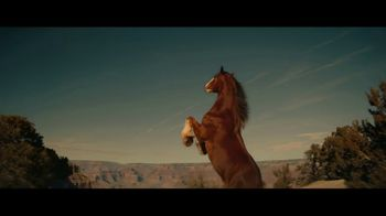 Budweiser TV Spot, 'Beer Country'