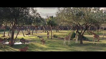 Disney Parks & Resorts TV Spot, 'All Your Wishes Come True' - 2064 commercial airings