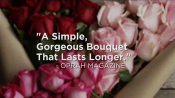 The Bouqs Company TV Spot, 'Valentine's Day' - Thumbnail 5