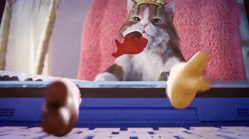 Goldfish TV Spot, 'Go-Karts: Internet Cats' - Thumbnail 8