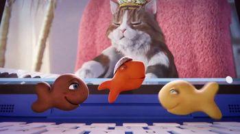 Goldfish TV Spot, 'Go-Karts: Internet Cats' - Thumbnail 9