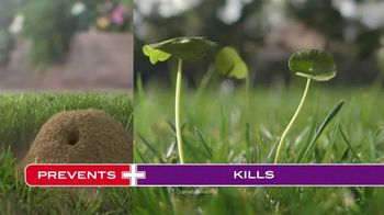 Scotts Turf Builder Southern Triple Action TV Spot, 'Open for Play' - Thumbnail 7