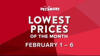 PetSmart TV Spot, 'Great Deals, Great Savings'