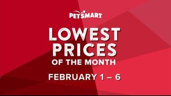 PetSmart TV Spot, 'Great Deals, Great Savings' - Thumbnail 3