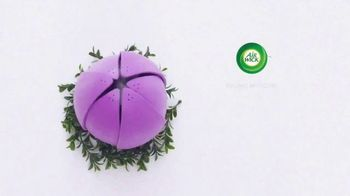 Air Wick Essential Oils TV Spot, 'Real People, Real Fragrance' - Thumbnail 1