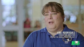 Subaru TV Spot, 'Animal Planet: Citizens for Animal Protection' [T1] - Thumbnail 2