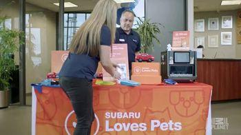 Subaru TV Spot, 'Animal Planet: Citizens for Animal Protection' [T1] - Thumbnail 5