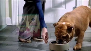 Blue Buffalo Blue Basics TV Spot, 'Rocky the Bulldog' - Thumbnail 10