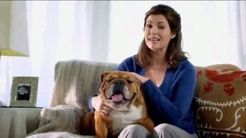 Blue Buffalo Blue Basics TV Spot, 'Rocky the Bulldog' - Thumbnail 2