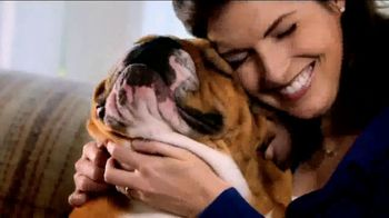 Blue Buffalo Blue Basics TV Spot, 'Rocky the Bulldog' - Thumbnail 6