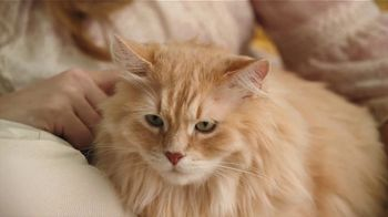 Blue Buffalo Cat Food TV Spot, 'BLUE for Cats' - Thumbnail 6