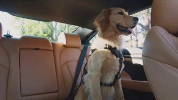 2017 Buick Lacrosse TV Spot, 'Looking for Lucky' Song by Matt and Kim