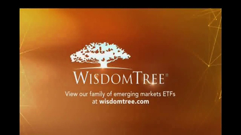 WisdomTree TV Spot, 'DGS: Emerging Markets Small Cap ETF' - Thumbnail 8