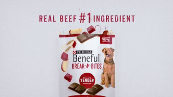 Purina Beneful Break-N-Bites TV Spot, 'You Gotta Get Cute' - Thumbnail 10