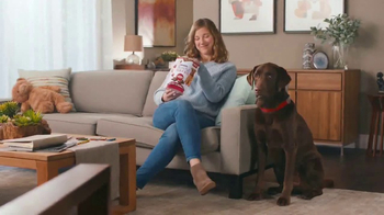 Purina Beneful Break-N-Bites TV Spot, \'You Gotta Get Cute\'