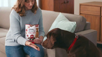 Purina Beneful Break-N-Bites TV Spot, 'You Gotta Get Cute' - Thumbnail 5