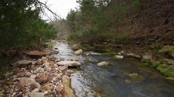 Large Arkansas Hunting Property With Home thumbnail