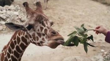 Omaha's Henry Doorly Zoo & Aquarium thumbnail