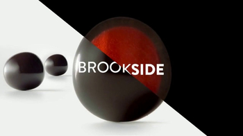 Brookside Chocolate TV Spot, 'All Your Sides' Song by Pete Rodriguez - Thumbnail 1