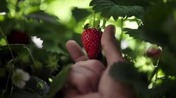 Häagen-Dazs Strawberry TV Spot, 'Sonidos sencillos' [Spanish] - Thumbnail 7