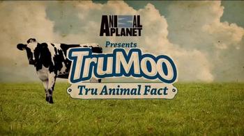 TruMoo Chocolate Milk TV Spot, 'Animal Planet: Tru Animal Fact' - Thumbnail 2